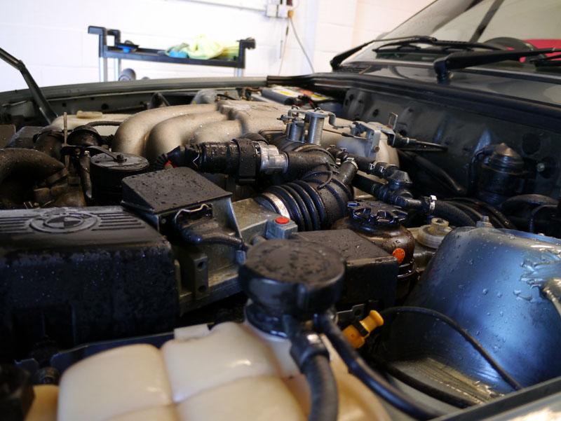 Engine Treatment at Ultimate Detailing Studio