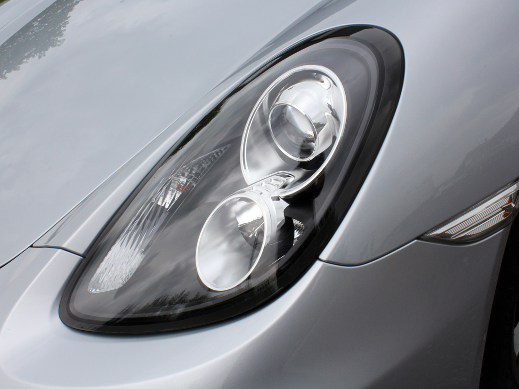 Porsche Cayman Receives An Alligator-Like Shine!